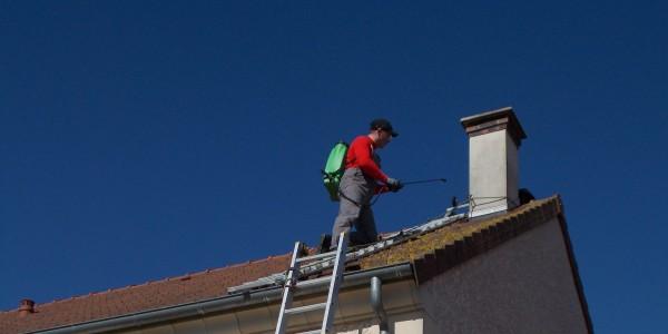 Entretien de votre toiture : démoussage et nettoyage de votre toiture en Normandie : Calvados, Seine Maritime et Eeure